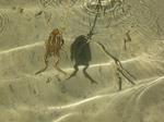 Matériel Canyoning sierra de Guara